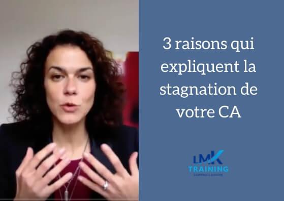 Stagnation du Chiffre d'Affaires : 3 explications